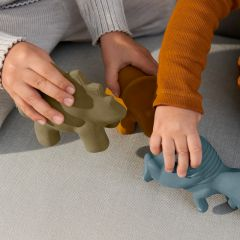 Lot de 3 jouets de bain David dino Liewood
