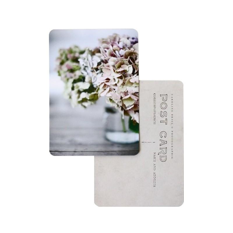 Cinq Mai Carte postale Hortensias