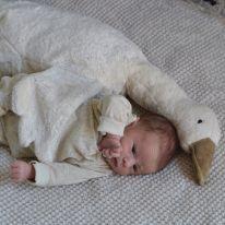 Peluche oie blanche Senger