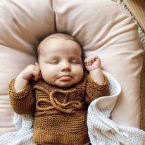 Nid pour bébé sugar plum Snuggle me