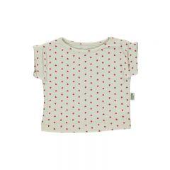 T-shirt bourrache coeurs Poudre Organic